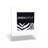 Zebra Group visual identity program